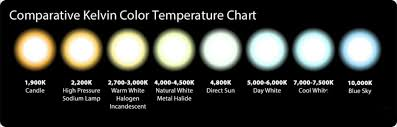Kelvin Color Chart Light Bulbs Msassociates Info
