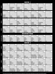 Insanity Workout Schedule Shaun T Insanity Workout The