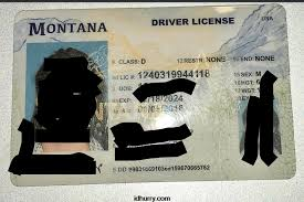 Fake Maker Id Montana Card