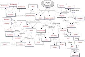 Concept Map -- Organic Compounds