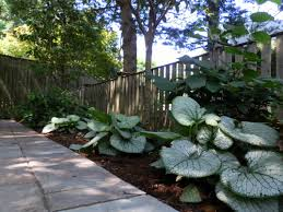 Small Picture Garden Shade Shade Gardens Indianapolis Wooden Slated Plant