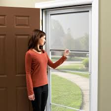 ventilating storm door