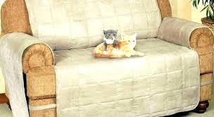 Cool couch covers Loveseat Cool Couch Covers Cat Proof Couch Cover Living Cat Proof Couch Cover Seat Sofa Slipcovers Laoisenterprise Cool Couch Covers Cat Proof Couch Cover Living Cat Proof Couch Cover