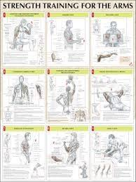 friday arm focus the best dumbbell workouts arms and upper body men s health singapore best