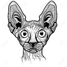 Cat Head Vector Animal Illustration For T Shirt Sketch Tattoo
