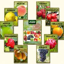 Patio Fruit Trees Suitable For Growing In Pots  Garden Ideas Non Gmo Fruit Trees For Sale