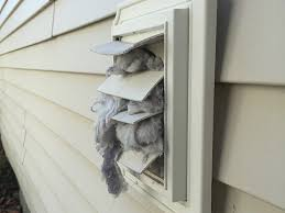 exterior dryer vent lint catcher. if your dryer lint vent ever looks like this, it\u0027s time to clean the entire vent, from wall appliance. exterior catcher e