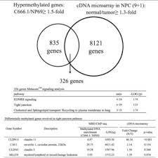 Genesis 1 And 2 Venn Diagram Screening For Potential Hypermethylated Genes In Npc The