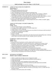 Marketing Assistant Manager Resume Samples Velvet Jobs