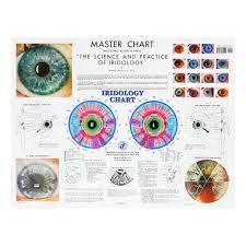 Iridology Chart Pdf Books And Charts Joyful Living Services