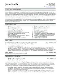 Sample Professional Resume Format For Experienced
