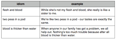 family vocabulary and exercises  flesh