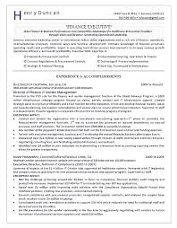 Director Of Finance Resume Example