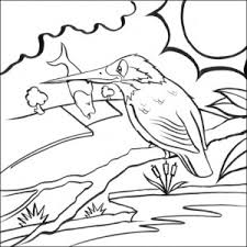 Small Picture nice and printable kingfisher colouring pages for kids Coloring