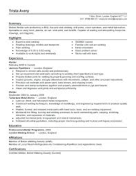 Welding Resume Examples Beauteous Examples Of Well Written Resumes Welder Resume Objective Examples Of