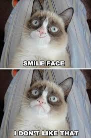 grumpy cat good smile. Contemporary Good Grumpy Cat Smile Face And Grumpy Cat Good Smile A