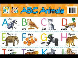 Image Result For Abcd Chart Image Elephant Birds Ants