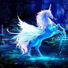 Unicorn pictures, Unicorn fantasy ...