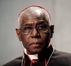 Image result for cardinal sarah bishop schneider