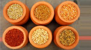 What are Millets?