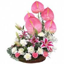 pink white carnations with pink anthuriums in basket