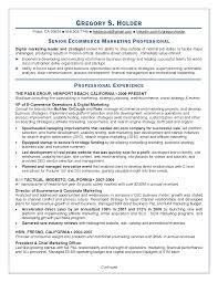digital marketing resume info digital marketing resume coordinator samples digital marketing
