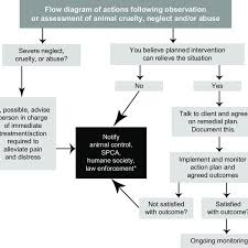 Animal Cruelty Charts A Flow Diagram Of Actions Following Observation Of An Animal