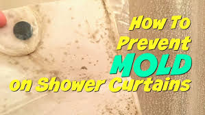 how to prevent that nasty mold growing on your shower curtain here are some super