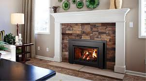 image of gas fireplace inserts reviews