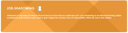 Questions To Ask At Job Shadow Job Shadowing Hr Portal