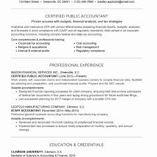 98 Tax Accountant Resume Sample Best Of Senior Accountant Resume