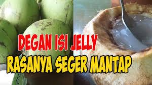 Resep minuman es puding cocopandan jelly drink sederhana spesial asli enak. Cara Membuat Degan Jelly Rasanya Seger Mantap Youtube
