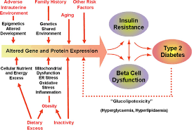 genetic determinants and molecular pathways in the pathogenesis of   figure