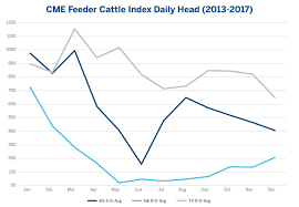 Feeder Cattle Index Chart Feeder Cattle Futures Trading Hours The Best Trading In World