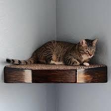 Corner Cat Shelves Cat Shelf Openpollme 49