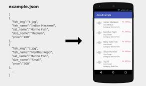Android Json Parsing And Display With Recyclerview