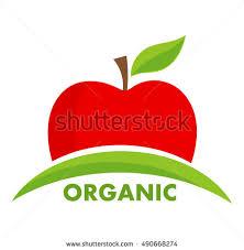 apple logo vector. organic apple logo or icon. vector illustration