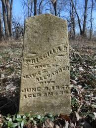Priscilla Alexander (1867-1867) - Find A Grave Memorial