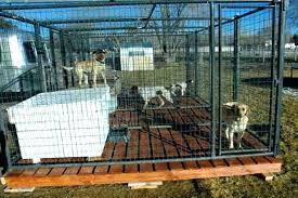 8 outdoor dog kennel ideas indoor run flooring how to build