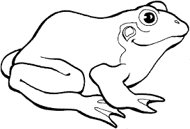 tree frog template check tree frog coloring pages printable bestappsforkids on frogs