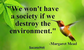world environment day beautiful quotes on environment success yeti new infographic 3