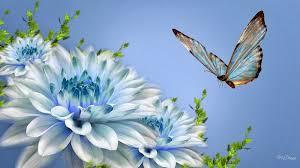 30 Wallpaper Bunga Cantik Deloiz Wallpaper природа