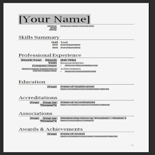 Professional Cv Template Word Format
