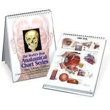 World S Best Anatomical Charts 9780960373048 The Worlds Best Anatomical Chart Series A