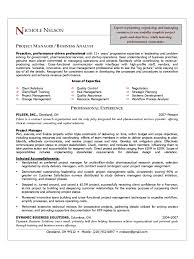 project manager cv template templates in pdf word excel project manager resume sample