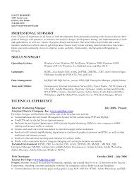 Resume Skills Summary Section Resume Computer Example Of Examples