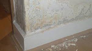 Get Rid Of Damp Problems On Wall