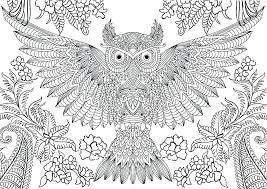 Coloring Pages For Adults Free Colouring Landscapes Flower Printable
