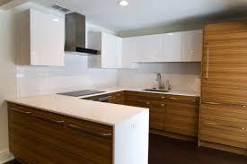 Zebrawood Kitchen Remodel, Rochester, NY. Cabinetry, Quartz Counters,  Mosaic, Tile, Sub Zero, Wolf