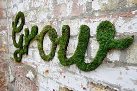 Grow Some Graffiti | Garden Culture Magazine